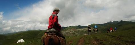 Bio Banner--Horseback.jpg